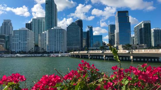 ¿Es la tecnología el punto de inflexión en Miami?